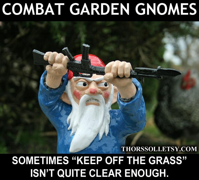 Combat Gnome MEME5