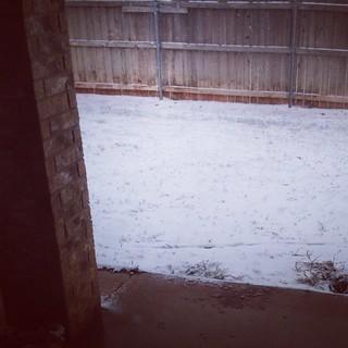 Snow day! ❄️