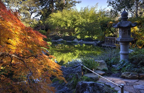 autumn autumncolors fallcolors fall japan japanesegarden garden hakonegardens saratoga california hdr 3xp raw nex6 selp1650 photomatix sunrise pond red orange yellow fav100 siliconvalley sanfranciscobay