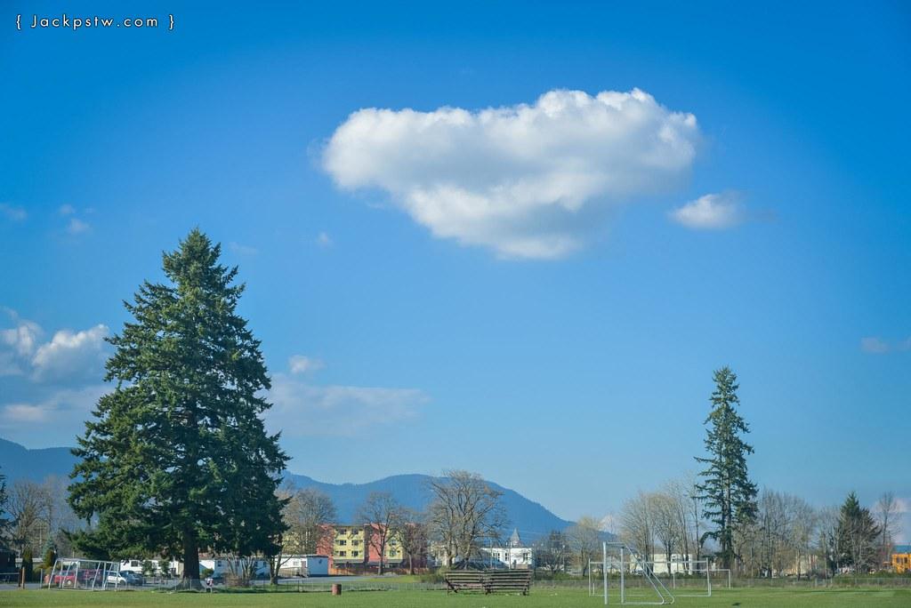 vancouver-island-landscape-urban-47