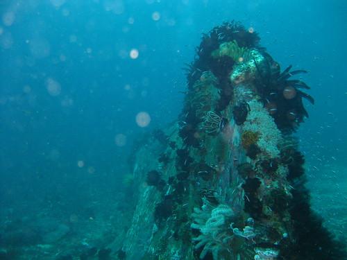 Sabang Wrecks, Sabang, Puerto Galera