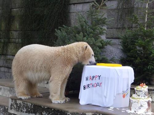 Da isses, das Geburtstagskind