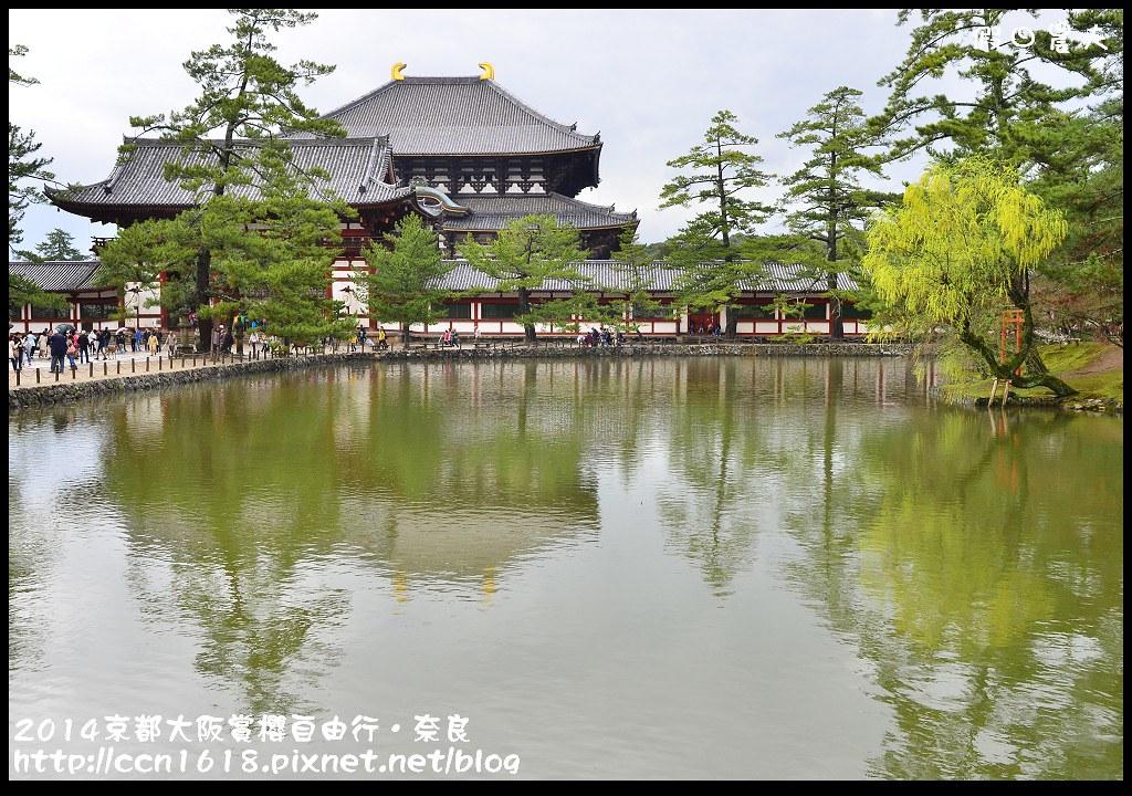 2014京都大阪賞櫻自由行.奈良DSC_1074