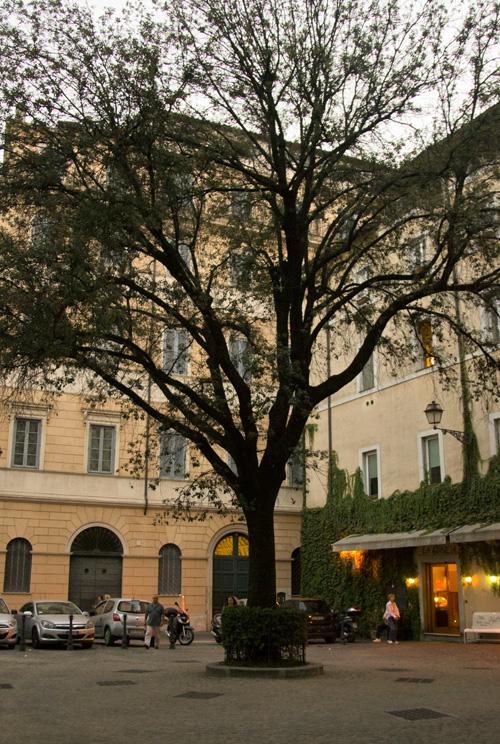Piazza della Quercia Roma