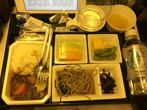 ANA Airline Meal