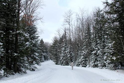 snow snowscenes snowyscenes snowylandscapes snowlandscapes michigan burtlake alanson petoskey walking strolling countryroads roads snowyroads robertcarterphotographycom ©robertcarter