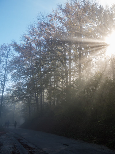 people sun mountains tree fog canon landscape amazing great slovenia valley lonely rays sunrays dejan magnificient 2014 lepe gorgeus ozadje fotografija peopleinfog canong15 hudoletnjak dejanh dejanhudoletnjak čudovite