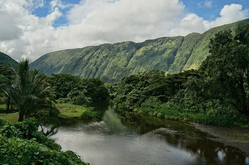green hawaii stream waipiovalley kukuihaele turtleslava2014 hiilawestream