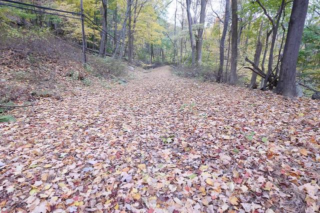 日, 2014-10-26 15:18 - Jones Pointの旧道
