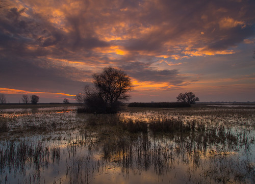 sunset marsh mercednationalwildliferefuge canon5dmarkiii renerodriguezphotography