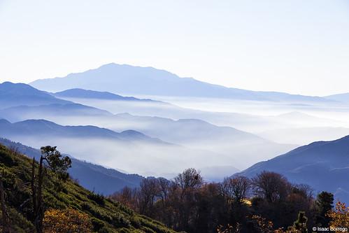 california blue trees sky mountains fog clouds lakearrowhead rimoftheworldhighway canonrebelt4i