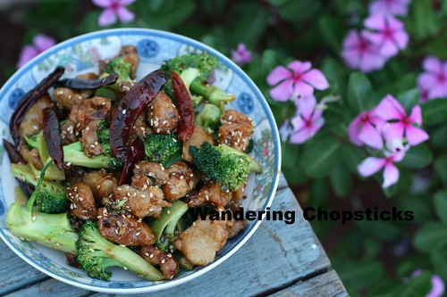 General Tso's Chicken 19