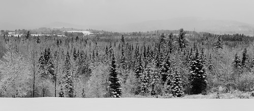 mountainviewgrand