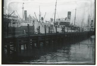 Kathryn Matacia SS ANNETTA-back