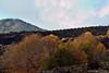 Etna / Colors Explosion / CT / Sicilia.