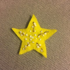leaf(0.0), star(0.0), maple leaf(0.0), yellow(1.0), starfish(1.0),