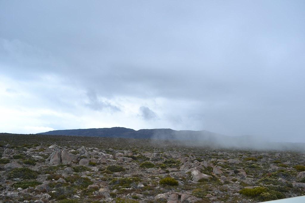 Mt. Wellington - south side