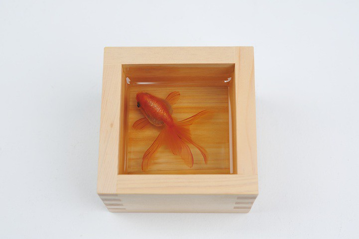 riusuke fukahori 2
