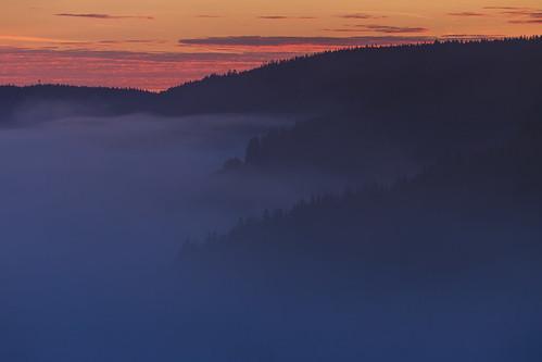 autumn mist black fog forest germany dawn hills valley baden schwarzwald badenwurttemberg urach wurttemberg vohrenbach urachtal