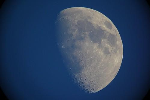 moon_5_sharpened_levels adjusted 自作天体望遠鏡にて撮影した月の写真。半月よりも少し太い。