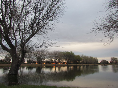trees clouds sunrise reflections pond texas riverbend resaca