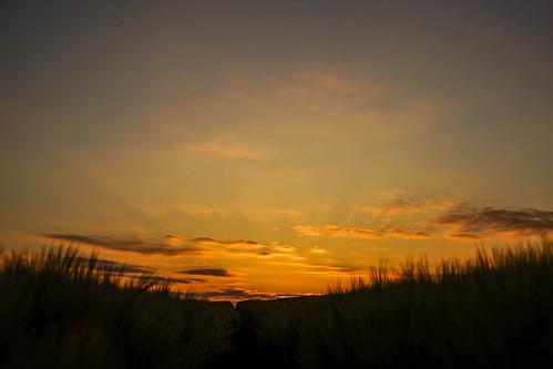 Sunrise-06571