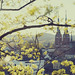 Spring in the city by Creative Days