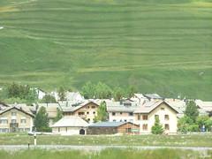 Bernina Express - Celerina/ Schlarigna