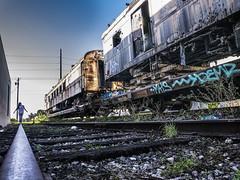 Abandoned Train, Miami
