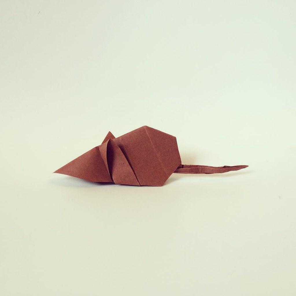 Luca De Giorgis Most Interesting Flickr Photos Picssr Origami Mousemouse Origamiorigami Mouse Diagramorigami Model By Eduardo Clemente Animal Nature