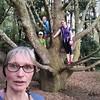 Paula and three little elves in a tree! #taitua #arboretum #eveningwalk #treeclimbing #nevertooold