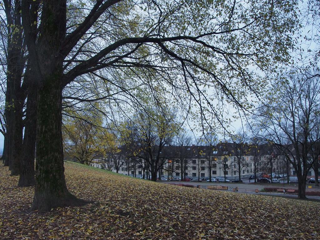 Torshovparken