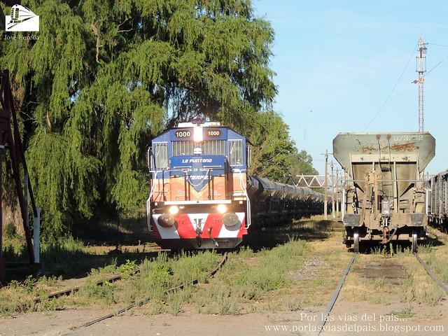 NREC MF1000 ingresando a Estación Rufino.