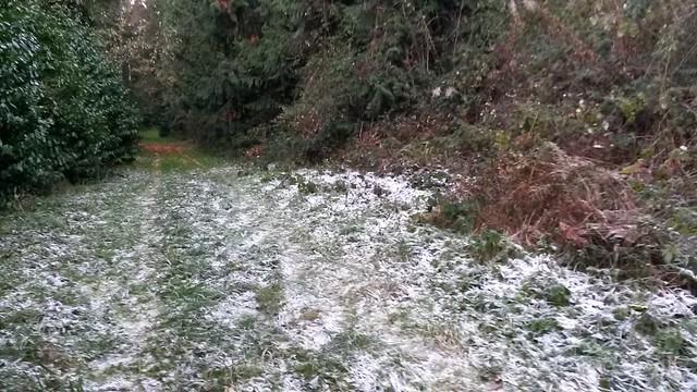 Odd frosty spot