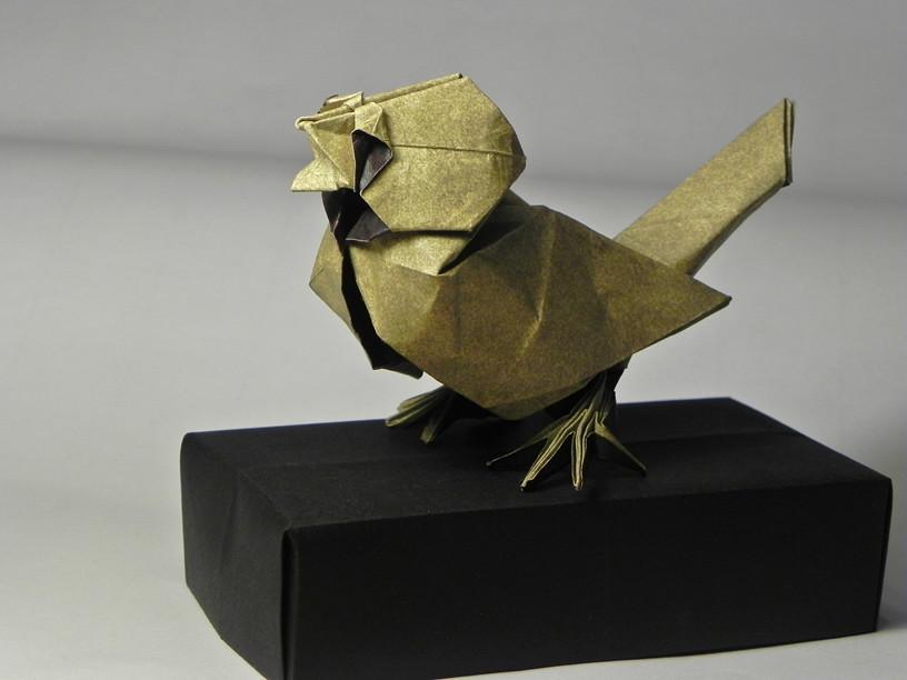 origami uruguay