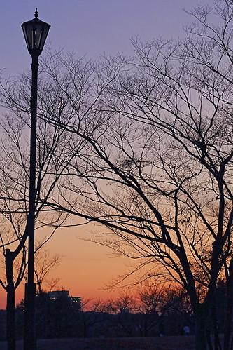 autumn sunset niigata