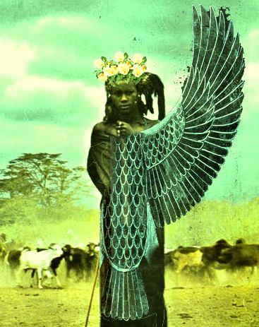 faraone11