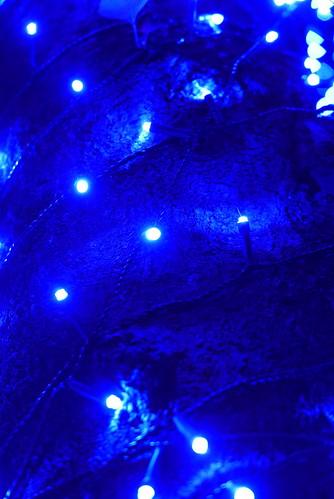 中目黒 青の洞窟 2014