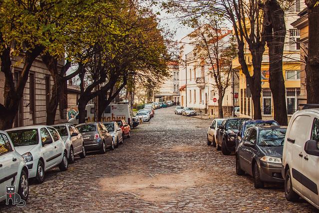 Kosančićev venac http://belgradecat.com/kosancicev-venac/