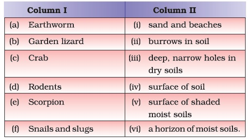 Class 7 important questions for science soil aglasem for Soil questions