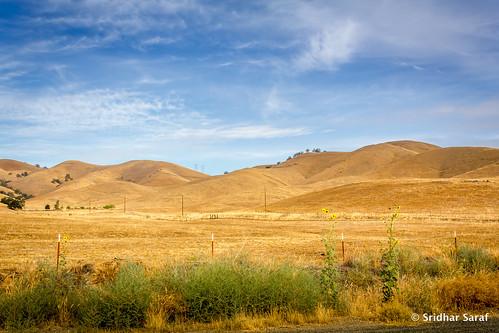 california ca usa unitedstates unitedstatesofamerica woodlake 2014 californiaphotography caphotography sridharsaraf untedstatesphotography