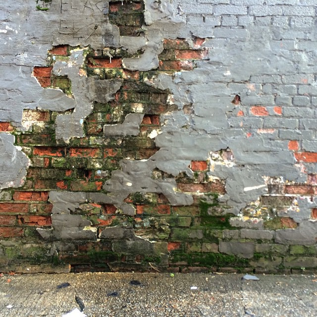 a wall in dc in one of the alleys that runs parallel to 14th street