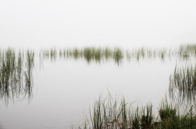 Les brumes de l'étang de Lers