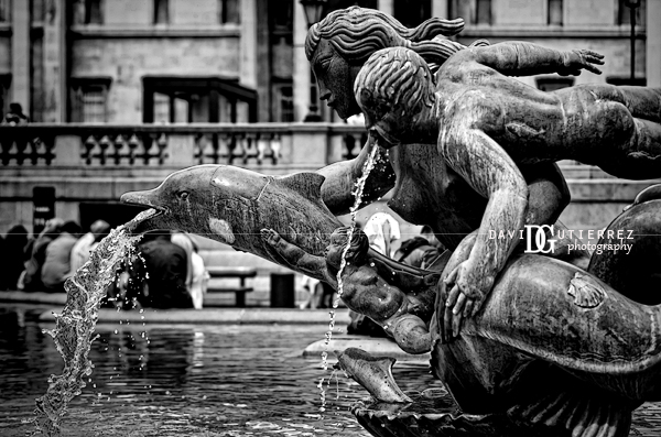 Trafalgar Square, London - Dolphins and Mermaids Fountains in Black and White Photography - David Gutierrez Photography, London Photographer