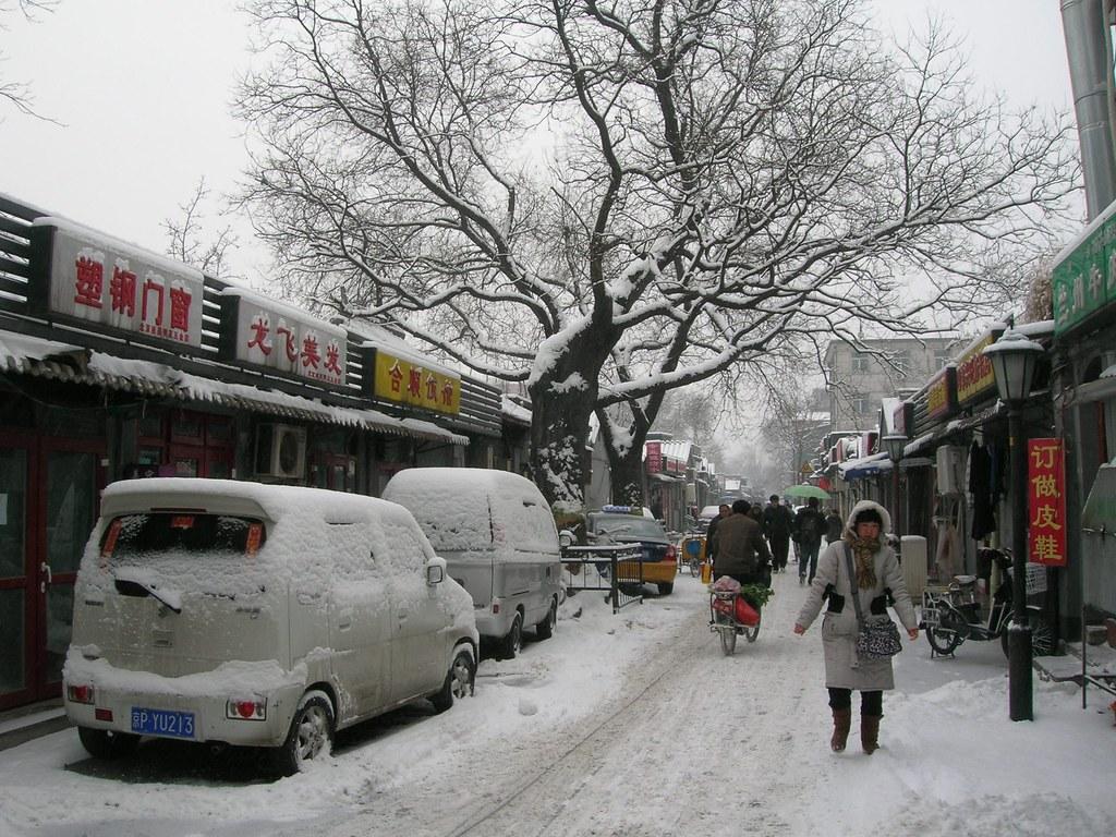 Low season travel - Alvinology