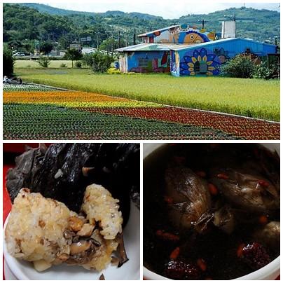 花蓮縣富里鄉羅山遊憩區周邊景點吃喝玩樂懶人包 (5)