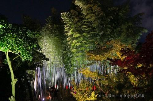 2014京阪神-高台寺夜間拜觀2185_001