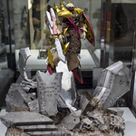 GBWC2014_World_representative_exhibitions-236