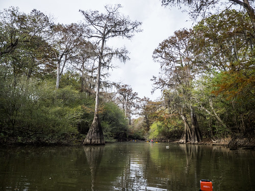 Savannah River from Stokes Bluff with LCU Nov 7, 2014, 4-18 PM Nov 8, 2014, 11-019