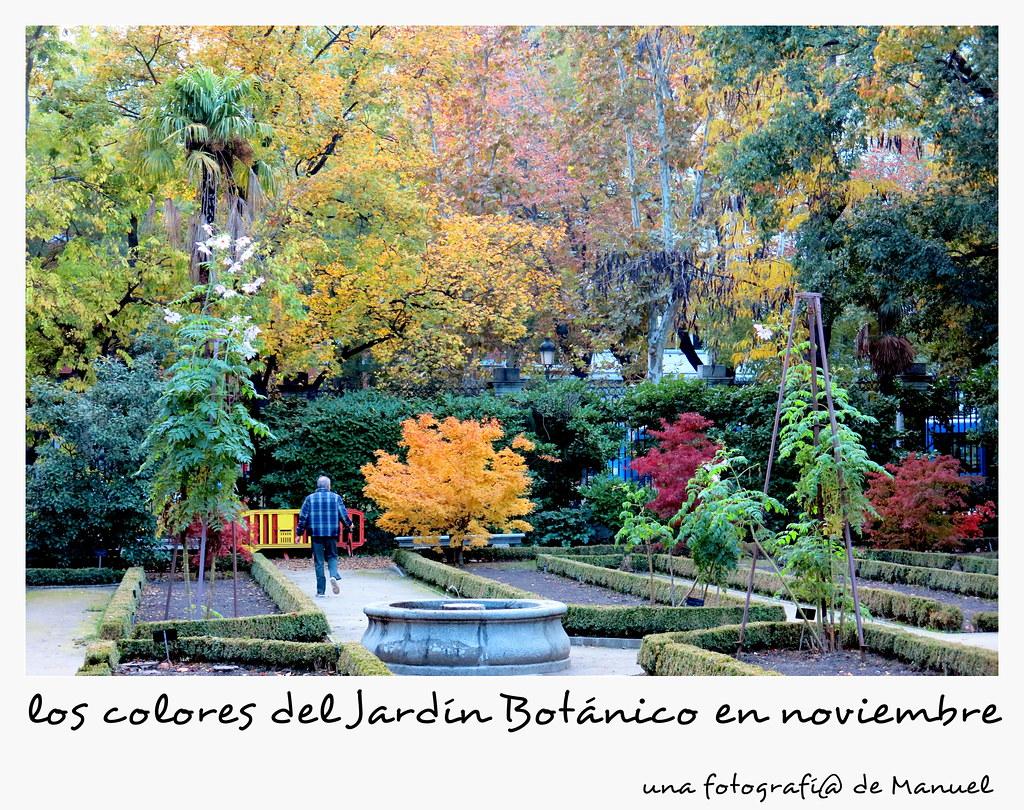 una tarde de noviembre en el jardín botánico de Madrid-351